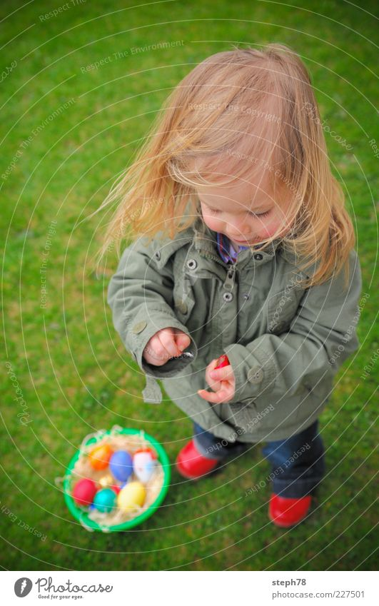 Human being Child Girl Life Playing Food Grass Hair and hairstyles Feasts & Celebrations Infancy Contentment Footwear Wait Search Cute Curiosity