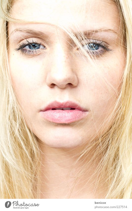 blonde Woman Human being Attractive Blonde Feminine Earnest Sadness Portrait photograph Looking into the camera Close-up Self-confident Hair and hairstyles