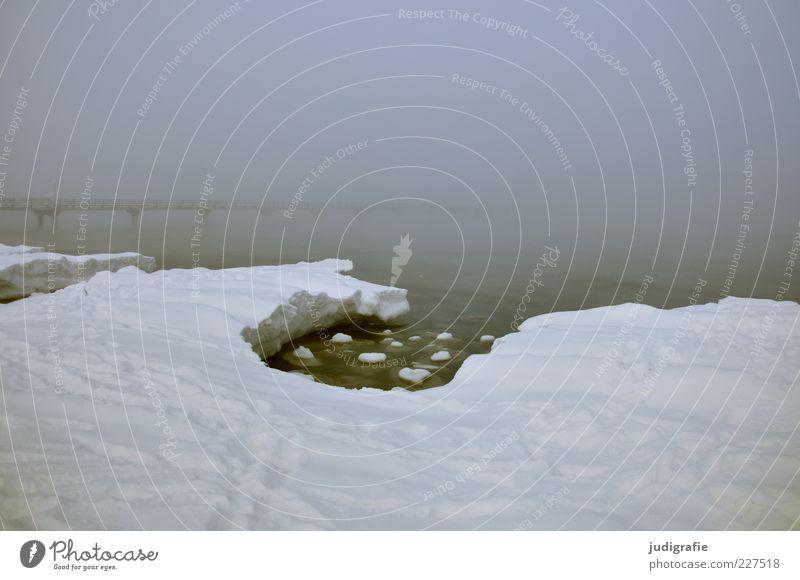 Nature Water Ocean Winter Loneliness Dark Cold Snow Landscape Ice Moody Coast Fog Environment Bridge Frost