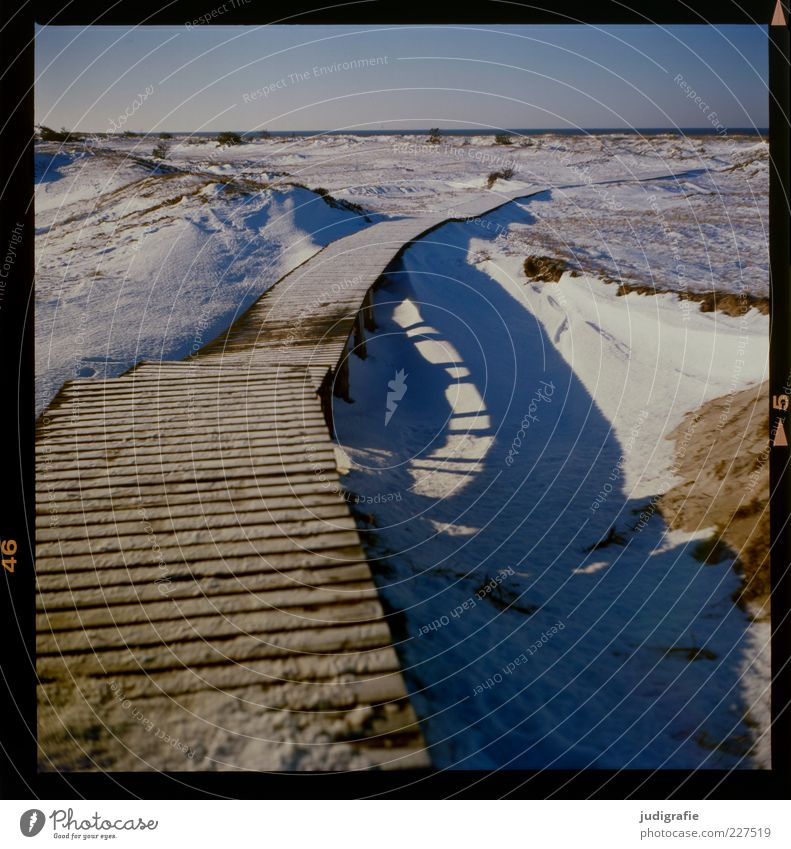 Darß Place Environment Nature Landscape Sky Winter Climate Ice Frost Snow Coast Baltic Sea Darss Cold Natural Moody Lanes & trails Footbridge Wood Woodway
