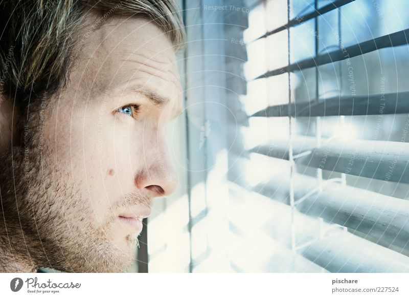 Youth (Young adults) Blue Face Loneliness Window Wait Adults Masculine Hope Future Observe Longing Expectation Concern Partially visible Venetian blinds