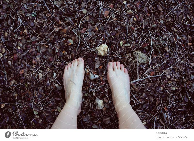 Feet walking on forest floor Design Skin Barefoot Wellness Harmonious Senses Relaxation Calm Freedom Human being Youth (Young adults) 1 Environment Nature