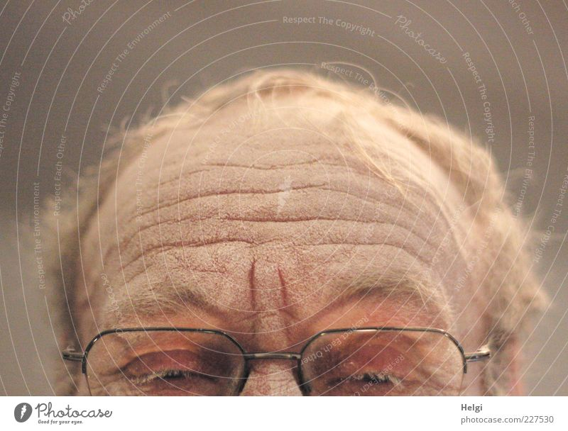 Human being Man Old Senior citizen Face Eyes Life Head Gray Adults Hair and hairstyles Brown Skin Dirty Hair Masculine