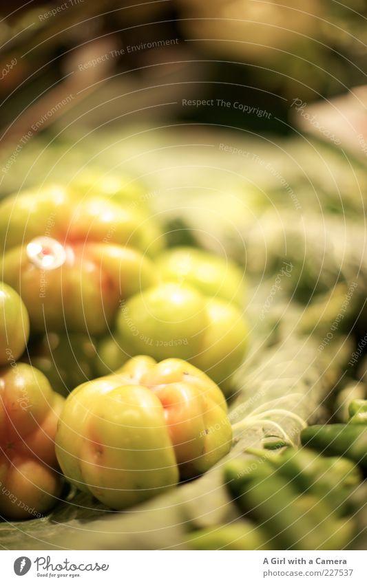 Green Lie Glittering Food Fresh Nutrition Round Vegetable Organic produce Markets Tomato Juicy Vegetarian diet Vitamin-rich Vitamin Immature