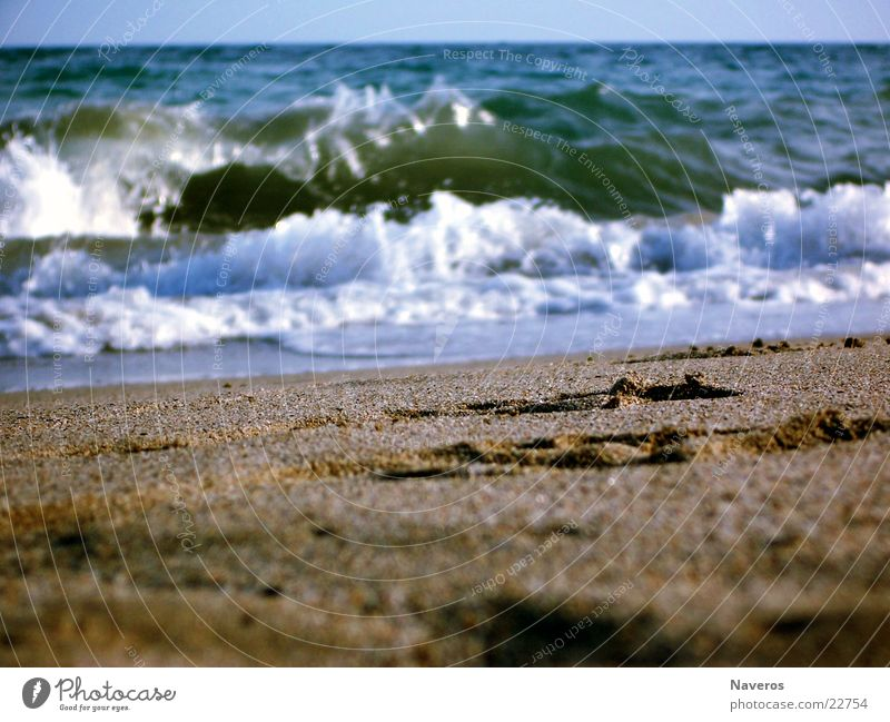 Water Ocean Summer Beach Vacation & Travel Sand Waves Tracks Footprint