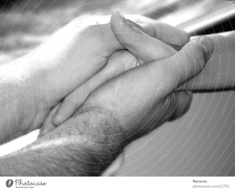 lovers Happy Harmonious Human being Masculine Couple Partner Hand 2 Touch To hold on Love Together Soft Black White Safety (feeling of) Sympathy Infatuation