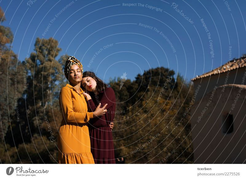 Two women embraced in the sun with autumnal bokeh and blue sky Human being Sky Youth (Young adults) Old Young woman Blue Tree 18 - 30 years Adults Autumn Love