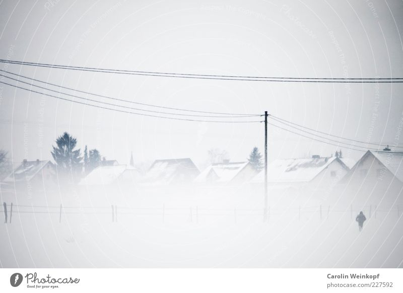 Snow flurries. Far-off places Freedom Winter Human being Androgynous 1 Landscape Sky Weather Bad weather Fog Ice Frost Field Village