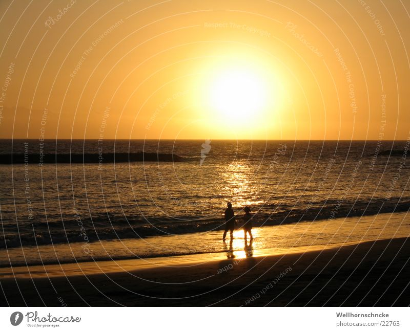 Sunset Beach Vacation & Travel Romance Ocean Twilight Tenerife Love Orange Evening Couple Nature In pairs Lovers Together Relationship Trust Affection
