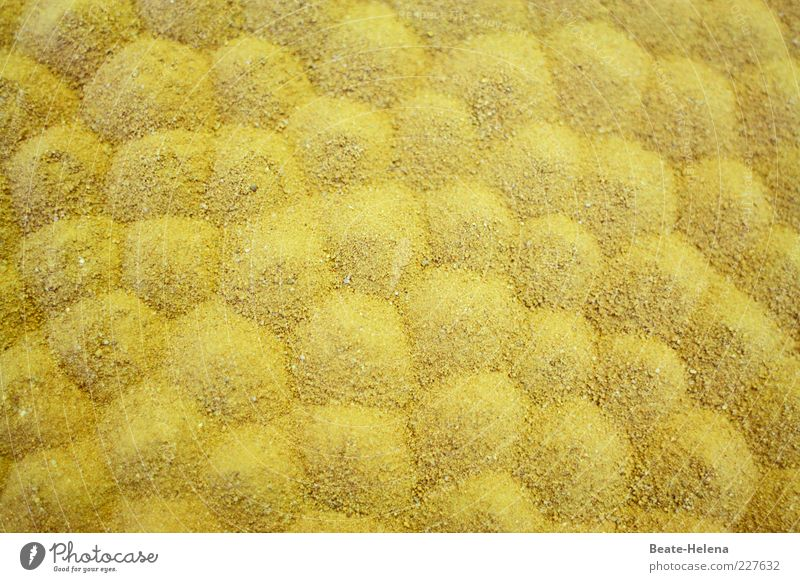 Yellow Sand Bright Brown Background picture Esthetic Round Exceptional Hill Curiosity Hot Pure Discover Make To enjoy Copy Space