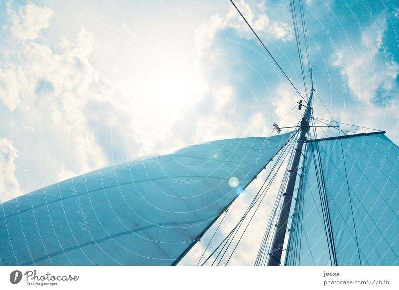 Great freedom Vacation & Travel Trip Freedom Summer Sun Sky Clouds Wind Sailing ship Blue Moody Wanderlust Mast Sailing trip Colour photo Exterior shot Day