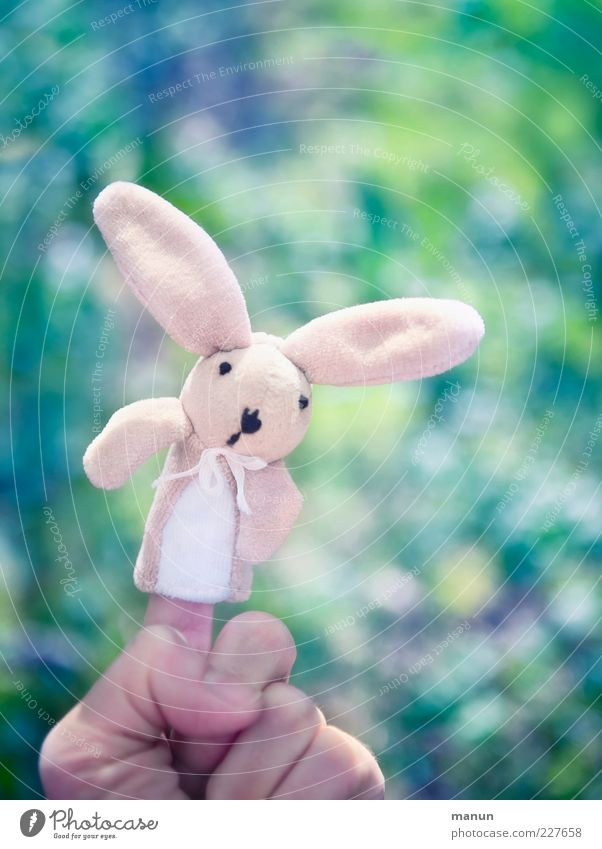 My name is Rabbit.... Playing Handcrafts Feasts & Celebrations Easter Easter Bunny Toys Cuddly toy Decoration Hare & Rabbit & Bunny Finger puppet Happiness