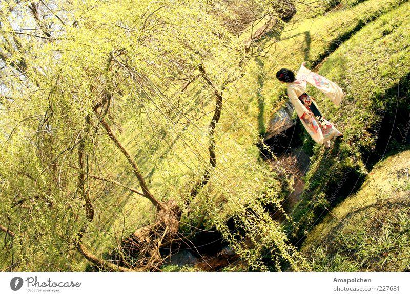 Woman Nature Tree Landscape Joy Environment Meadow Spring Happy Garden Park Contentment Dance Happiness Beautiful weather Joie de vivre (Vitality)