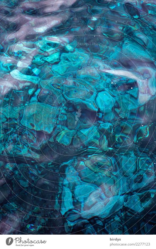 Madeira blue 2 Ocean Water Reef Coral reef Stone Esthetic Exceptional Fresh Maritime Positive Beautiful Blue Turquoise Design Colour Pure Background picture