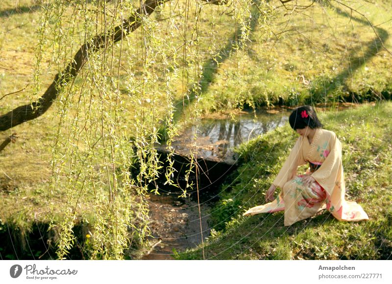 Woman Nature Water Relaxation Calm Happy Garden Art Park Dance Culture Dress Asia Painting and drawing (object) Gastronomy Picturesque
