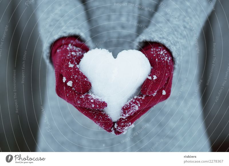 winter love Human being Hand 1 Environment Nature Winter Snow Gloves To hold on Gray Red White Happy Joie de vivre (Vitality) Love snow heart Heart Coat