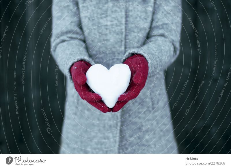 Winter love iii Woman Adults 1 Human being Snow Coat Gloves To hold on Gray Red White Happy Contentment Joie de vivre (Vitality) Love snow heart Heart