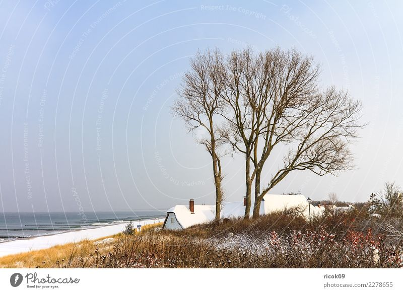Baltic Sea coast in Ahrenshoop in winter Relaxation Vacation & Travel Tourism Ocean Winter House (Residential Structure) Nature Landscape Water Clouds Climate