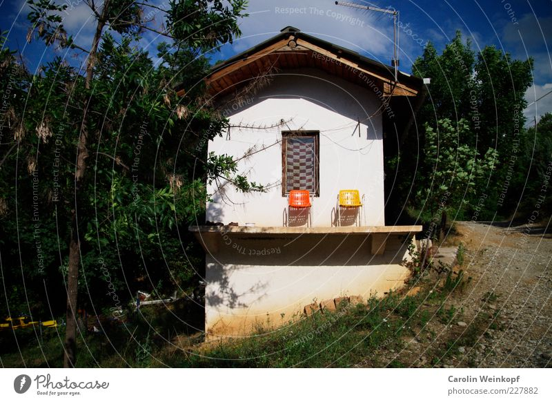 Tree Summer House (Residential Structure) Yellow Relaxation Wall (building) Window Style Wall (barrier) Orange Together Facade Design Living or residing Chair Idyll