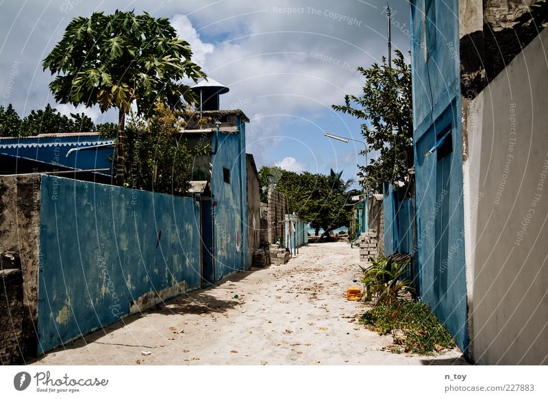 forsake sb./sth. Far-off places Freedom Summer Village Deserted Wall (barrier) Wall (building) Street Lanes & trails Poverty Simple Blue Patient Calm