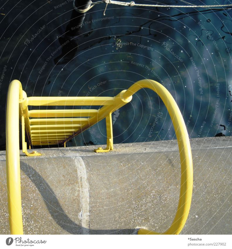 Water Blue Yellow Cold Gray Fear Dirty Concrete Stairs Corner Round Swimming pool String Deep Banister Ladder