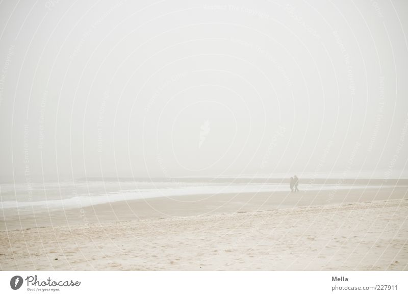 Winter Lake Human being Couple 2 Environment Nature Landscape Sand Air Sky Climate Weather Fog Ice Frost Coast Beach North Sea Ocean Going Bright Cold Gloomy