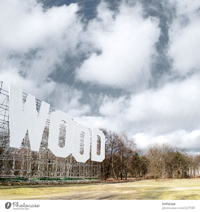 Sky Nature Tree Plant Clouds Forest Meadow Berlin Environment Landscape Park Characters Typography Beautiful weather Word Environmental pollution