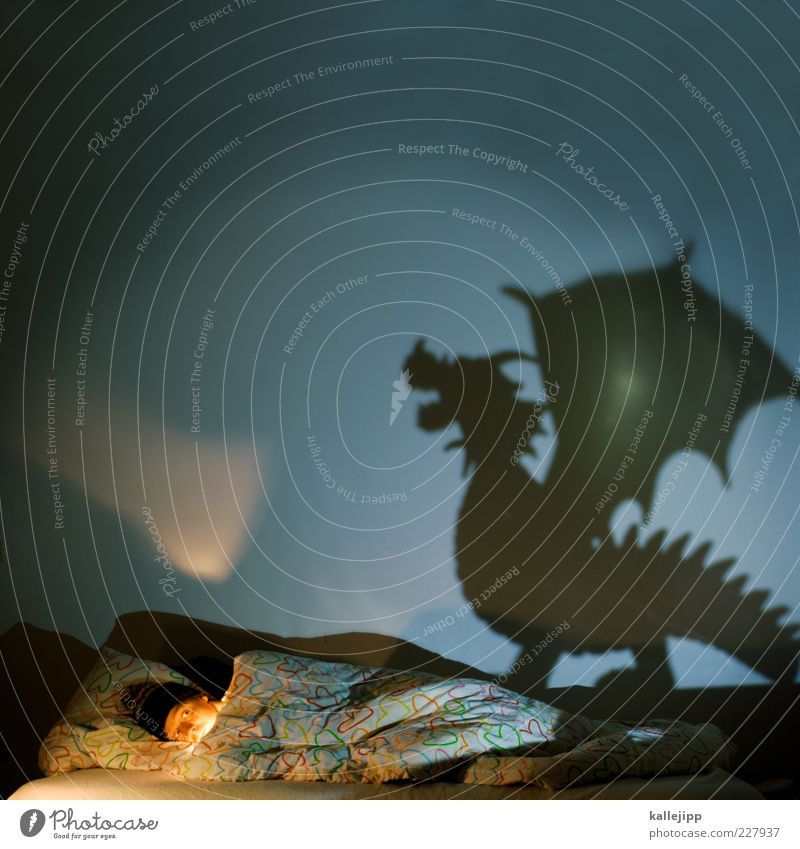 dragondream Bed Bedroom Human being Masculine Man Adults 1 Animal Wild animal Sign Sleep Dream Dark Surprise Fear Horror Fear of death Dragon Monster