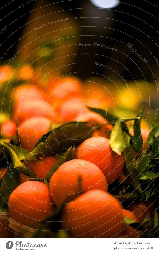 Nutrition Orange Healthy Fruit Lie Sweet Round Many Delicious Mature Markets Vitamin Organic produce Vegetarian diet Sense of taste Market stall