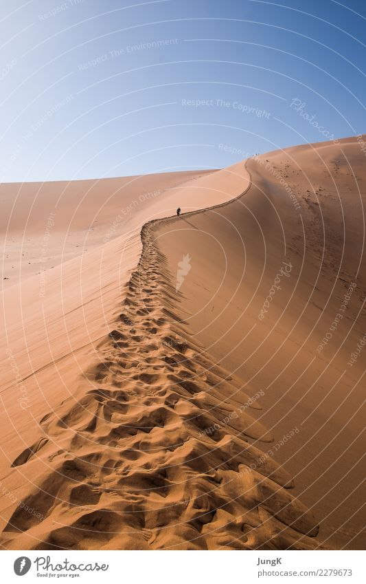 upward Vacation & Travel Tourism Far-off places Freedom Expedition Nature Landscape Sand Warmth Desert Namibia Africa Footprint Hiking Self-confident Success