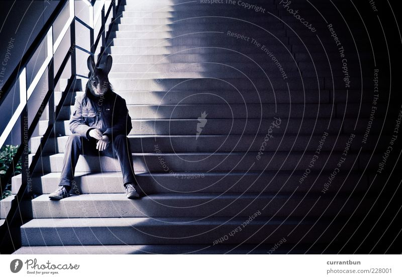 i'm a rabbit.. Hare & Rabbit & Bunny Mask Stairs Handrail Cigarette Pattern Exterior shot Copy Space right Evening Night Shadow Contrast Full-length Downward