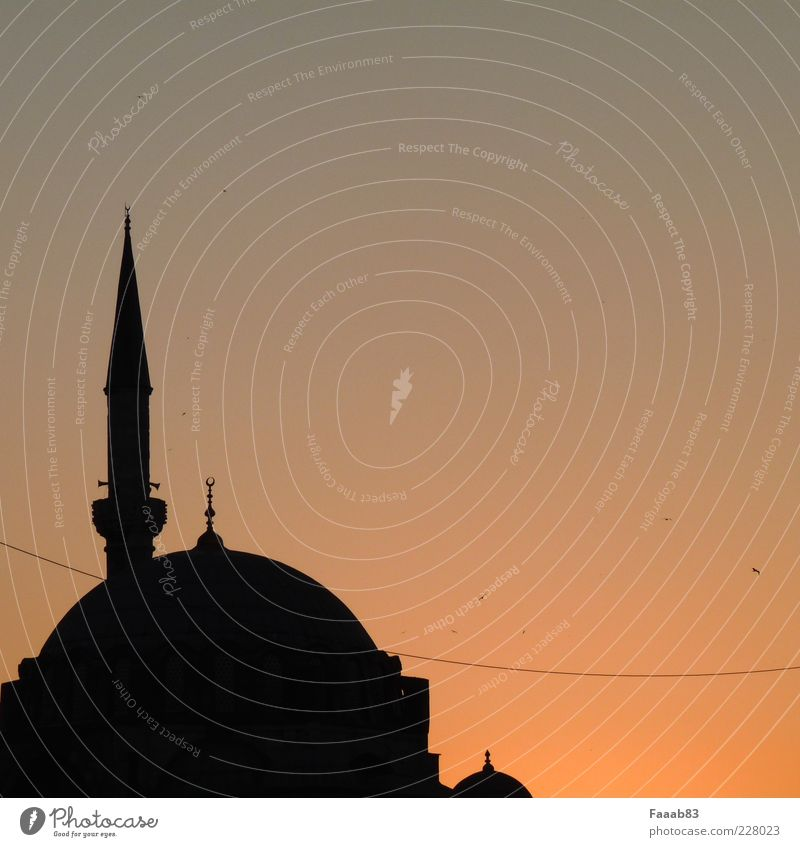 1001 nights Work of art Sunrise Sunset Istanbul Turkey Church Manmade structures Architecture Tourist Attraction Blue Mosque Hagia Sophia Calm Longing