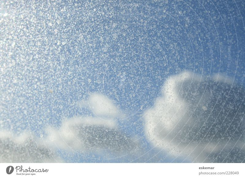 heavenly Nature Sky Sky only Clouds Sunlight Weather Esthetic Bright Beautiful Blue Heavenly Windscreen speckled Abstract Copy Space Colour photo Exterior shot