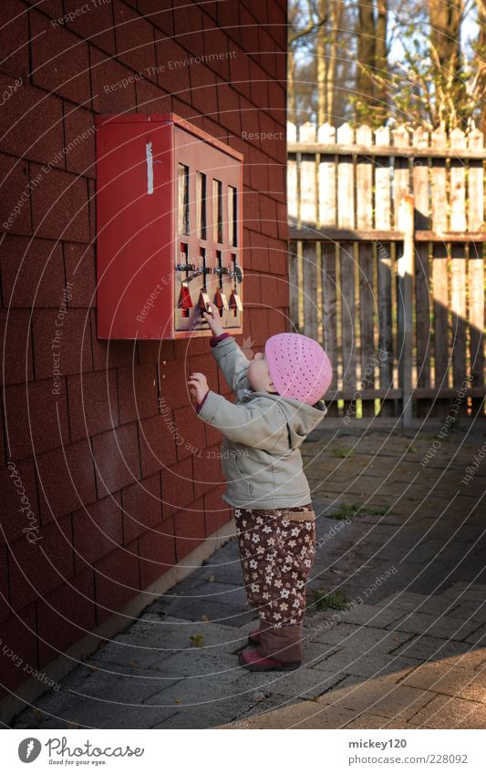 Human being Girl Joy Autumn Wall (building) Playing Wall (barrier) Infancy Study Cute Curiosity Touch Toddler Pants Cap Discover