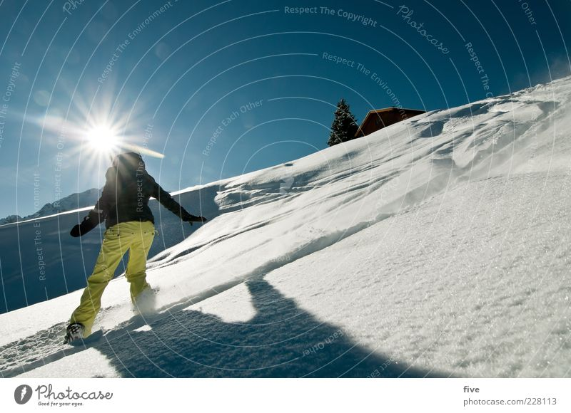 sunny side Sports Winter sports Ski run Woman Adults Nature Landscape Sky Cloudless sky Sun Beautiful weather Snow Hill Alps Mountain Joy Happy Deep snow