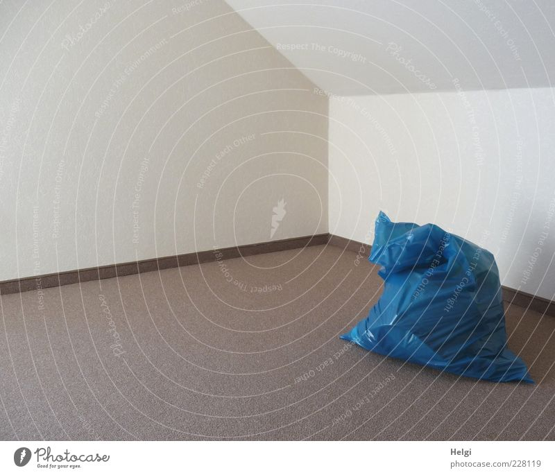 Blue White Calm Wall (building) Wall (barrier) Bright Brown Contentment Room Arrangement Fresh Esthetic Stand Floor covering Living or residing Simple