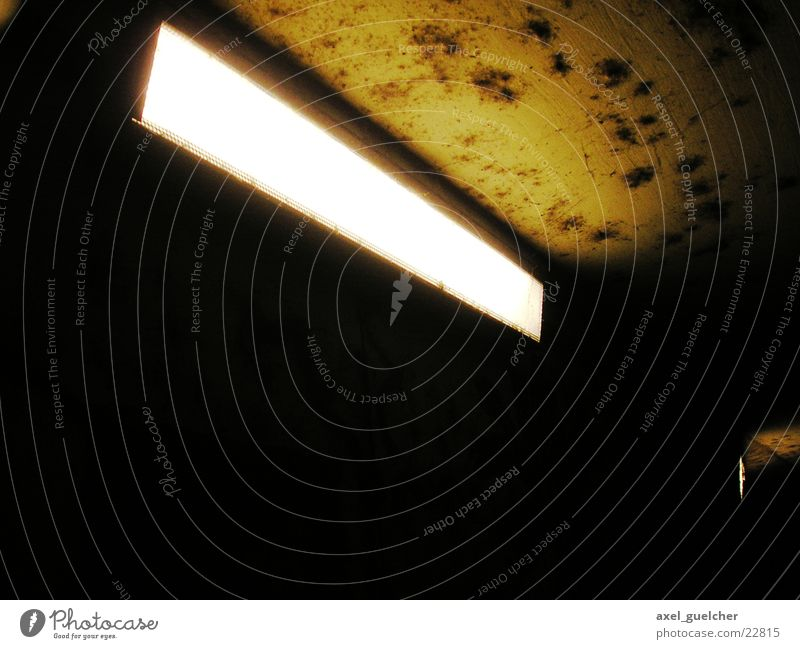 anxiety Dark Lamp Light Photographic technology Underpass Mold Bright