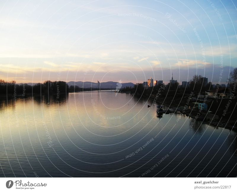Danube island Danube Island Light Violet Tree Panorama (View) Water sone Blue mirror-und Large