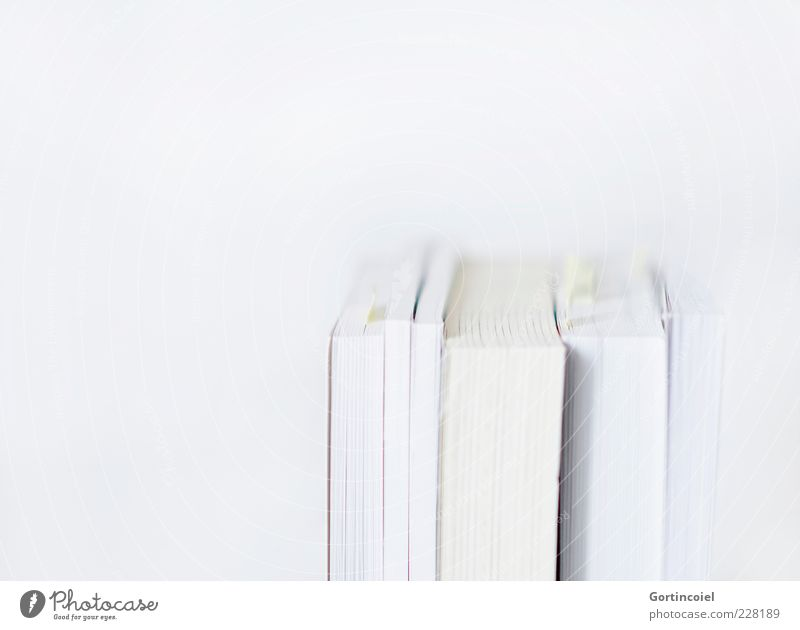 White Bright Book Academic studies Education Science & Research Know Page Literature Minimalistic Reading matter Media Isolated Image Copy Space left