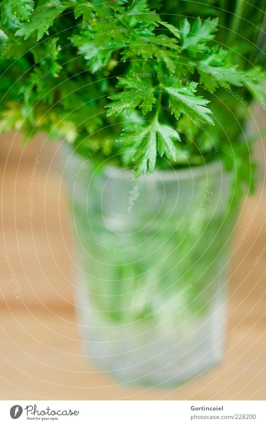 Green Leaf Nutrition Food Glass Fresh Herbs and spices Organic produce Vegetarian diet Parsley Food photograph