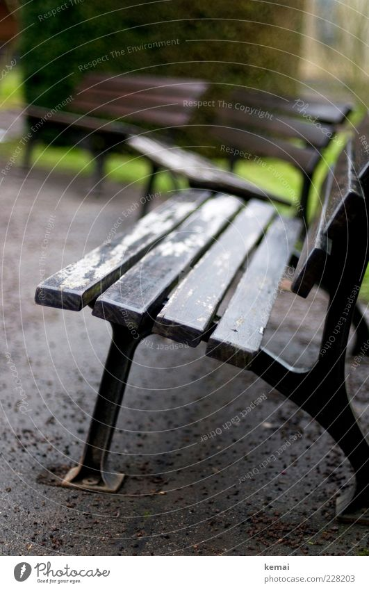 No bank weather Winter Bad weather Rain Park Park bench Bench Wooden bench Old Second-hand Pebble Asphalt Empty Loneliness 3 Semicircle Colour photo