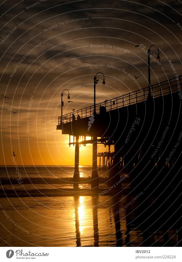 California Dreamin' Vacation & Travel Tourism Far-off places Freedom Sun Beach Ocean Waves Water Sky Clouds Coast Romance Break Footbridge santa monica