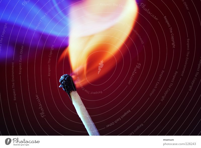 Beautiful Red Natural Bright Illuminate Fire Idea Hot Flame Burn Match Rousing
