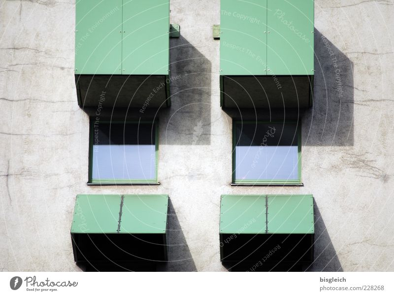 Green Eyes Window Wall (building) Wall (barrier) Closed Exceptional Symbols and metaphors Pane