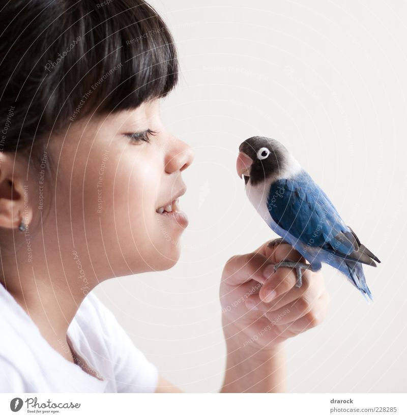 Birdie Blue Human being Child Youth (Young adults) Blue White Beautiful Girl Joy Animal Black To talk Head Small Friendship Bird Infancy