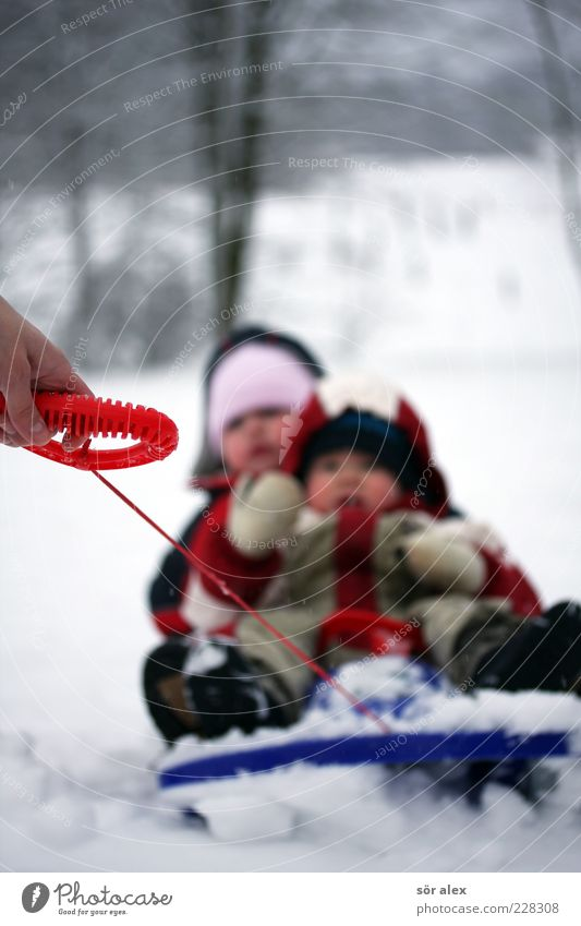 ...faster Human being Toddler Girl Boy (child) Infancy Hand 2 1 - 3 years Nature Winter Snow Gloves Snowsuit Footwear Cap String Sleigh Happiness Happy Joy Pull
