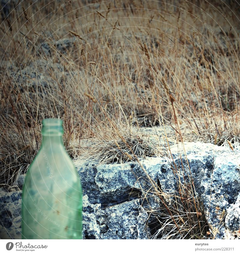 No Coke in Angola! Stone Bottle Neck of a bottle Empty Grassy plains Colour photo Exterior shot Detail Copy Space right Day Deserted Loneliness 1 Exceptional