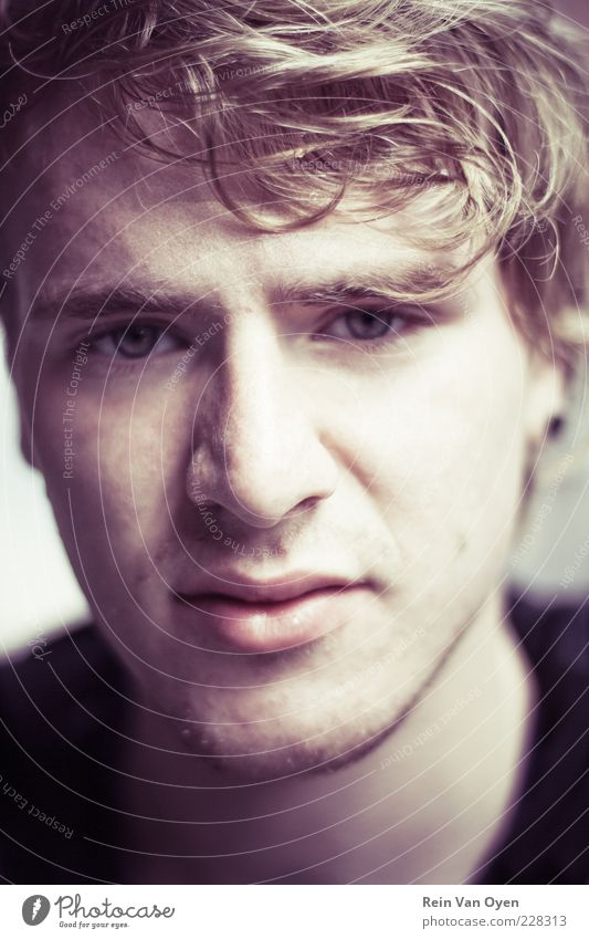 Portrait Human being Young man Youth (Young adults) Face 1 18 - 30 years Adults Sweater Hair and hairstyles Brunette Blonde Curl Designer stubble Looking Gloomy