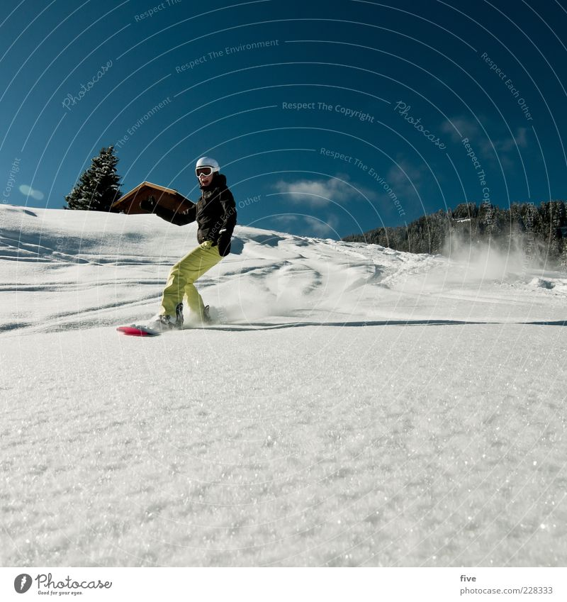 boarding Leisure and hobbies Winter Snow Winter vacation Mountain Sports Winter sports Snowboard Ski run Human being Woman Adults 1 30 - 45 years Nature