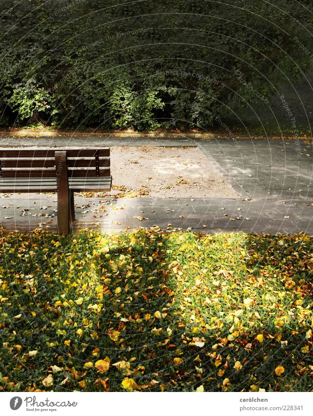 The country needs children! Deserted Yellow Gold Green Playground Sandpit Bench Empty Childless Reflection Loneliness Motionless Colour photo Exterior shot